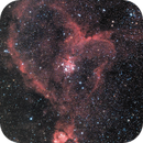 Heart Nebula,                                Stijn