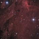 Pelican nebula,                                lucky_s