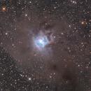 The Iris Nebula,                                Olli Arkko