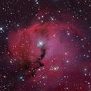 IC 2177,                                noodle