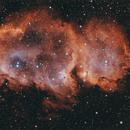 IC1848 (Westerhout 5) - Soul Nebula,                                Joe Santacroce