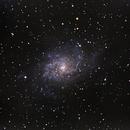Triangulum Nebula (Messier 33),                                Miles Zhou