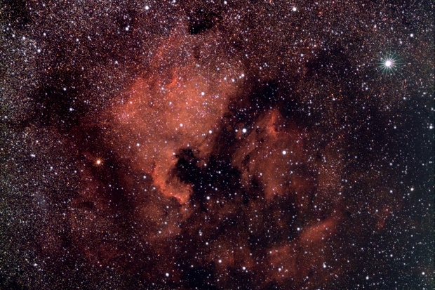 The North American and Pelican Nebulae, NGC 7000 and IC5070,                                Steven Bellavia