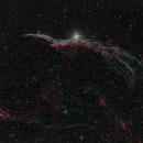 NGC 6960  Western Veil - Cirrus Nebel - Schleier Nebel,                                Günther Dick