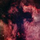 North America and Pelican Nebula,                                Richard Vanderbeek