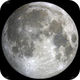 The Moon, before the eclipse,                                Francesco Cuccio
