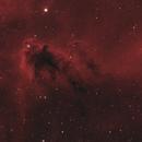 The Boogeyman Nebula in Orion LDN1622,                                Sendhil Chinnasamy