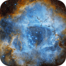 Rosette Nebula with OPT Filter Triad Ultra Quad-Band Narrowband Filter,                                Andre van Zegveld