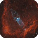 Gas Menagerie, OU-4, Sh2-129, Bernard 150, The Flying Bat, The squid and The Dark Seahorse Nebulas,                                oaklandish