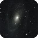 M81 Bode's Galaxy,                                Kevin Smith