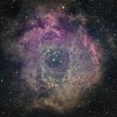 Roseta HA RGB,                                joperenclo