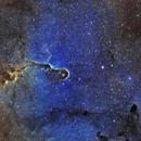 Elephant's Trunk Nebula  - IC 1396 in SHO,                                Crazy Owl Photography