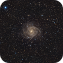 Out-of-season catch: IC342 the Hidden Galaxy,                                Francesco Meschia