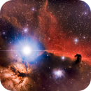 Horse Head Nebula and Flame Nebula,                                Monty Giavelli