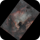 NGC 7000 - North America Nebula,                                Stephan Meyer