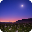 Moon,Jupiter and Venus in a beautiful show a few minutes before twilight !,                                Mohammad Nouroozi