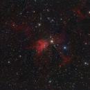 The IC417 nebula in Auriga,                                Francesco Meschia