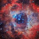 Rosette Nebula,                                Roberto Colombari