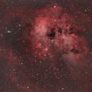 IC410 - Tadpoles Nebula (HOO),                                Nick's Astrophotography
