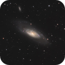 M106 with my little 100mm APO,                                Sven Hoffmann