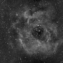 C49 Rosette Nebula-NGC 2237-Ha-Meade 80 ED triplet-ASI 1600 MM-Pro-reprocessed,                                Adel Kildeev