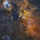 A tour around Cygnus (24 panels; 126 hours),                                Sendhil Chinnasamy