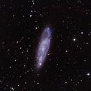NGC247,                                Peter Kestel