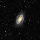 M81,                                zoyah