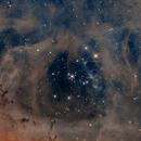 The Rosette Nebula, NGC 2444 in HOO,                                Madratter