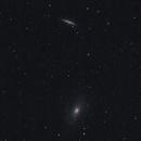 M81 M82 Wide Field (First Light TS-Optics APO 80/544),                                Harold Freckhaus