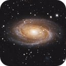 Messier 81,                                Jason Rhodes