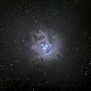 Iris Nebula,                                Tom Marsala