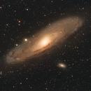 M31 - Andromeda Galaxy,                                Rob Arkins