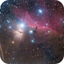 Horsehead Nebula with reflections,                                Colin
