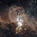 NGC 3576 The Statue of Liberty Nebula,                                Carlos Taylor