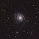 The PinWheel Galaxy M101,                                Joseph Buchanan