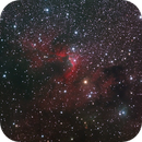 SH2-155 - The Cave Nebula in Cepheus,                                Hap Griffin