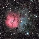 Trifid Nebula,                                Malcolm Ellis