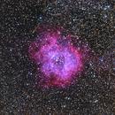 NGC 2244 - The Rosette Nebula & Friends,                                Steve Ludwig