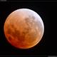 Total Lunar Eclipse - 31st January 2018,                                Roger Groom