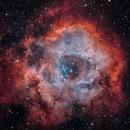 Rosette Nebula - Narrowband,                                MSabina