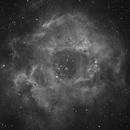 Rosettennebel NGC2237,                                Hermann Schieder