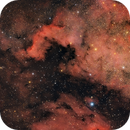 NGC 7000,                                Manel Martín Folch