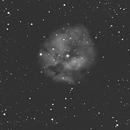 C19 Cocoon Nebula-Ha-Meade 8' LX-85 ACF-OAG-ASI 1600 MM-Pro,                                Adel Kildeev