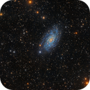 NGC 2403, a little IFN and a few companions.,                                Alberto Pisabarro