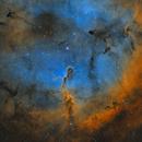 IC 1396 (Elephant's Trunk Nebula) in Cepheus - Four Panel Mosaic,                                Steve Milne