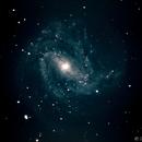Southern Pinwheel Galaxy (Messier 83),                                Bruce Rohrlach