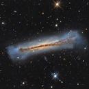 NGC 3628 (Sarah's Galaxy),                                DetlefHartmann