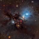 Embryo Nebula, NGC1333,                                Ricardo Pereira