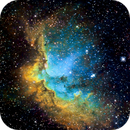 Wizard Nebula (NGC7380) in Hubble Palette (SII/Hα/OIII),                                Jose Carballada